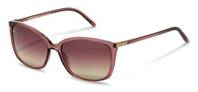 Rodenstock-Solbrille-R3291-light brown, rose gold
