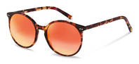 rocco by Rodenstock-Solbrille-RR333-redhavana