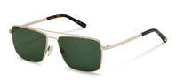rocco by Rodenstock-Solbrille-RR104-lightgold/havana