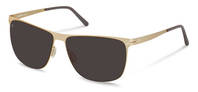 Rodenstock-Solbrille-R1411-light gold, grey