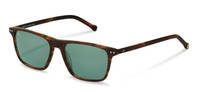 rocco by Rodenstock-Solbrille-RR326-havana