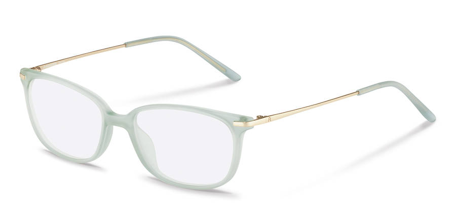 Rodenstock-Correction frame-R5319-lightbrown/gold
