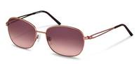 Rodenstock-Sunglasses-R1418-lightbrown/brown