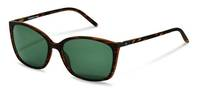 Rodenstock-Sunglasses-R3291-havana/darkgun