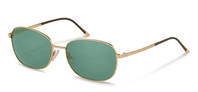Rodenstock-Sunglasses-R7410-gold/grey
