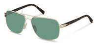 Rodenstock-Sunglasses-R1413-gold, dark havana
