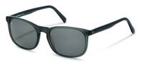Rodenstock-Sunglasses-R3287-grey