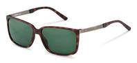 Rodenstock-Sunglasses-R3295-havana/darkgun