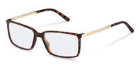 Rodenstock-Bingkai koreksi-R5317-havana, light gold