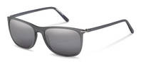Rodenstock-Sunglasses-R3305-grey