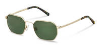 Rodenstock Capsule Collection-Sunglasses-RR107-gold/blackgreenstructured