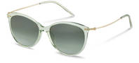 Rodenstock-Sunglasses-R3311-lightgreen/gold