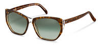 Rodenstock-Sunglasses-R3315-havanalayered